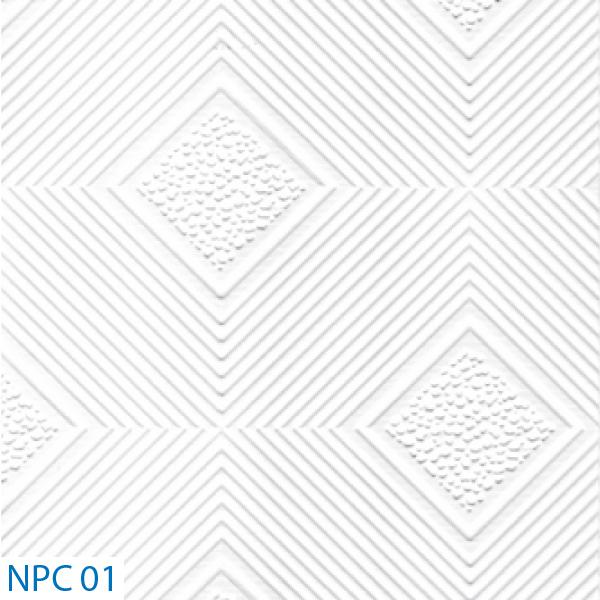 NPC 01