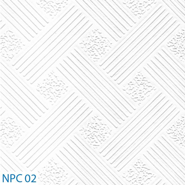 NPC 02