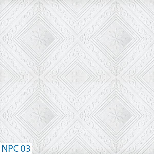 NPC 03