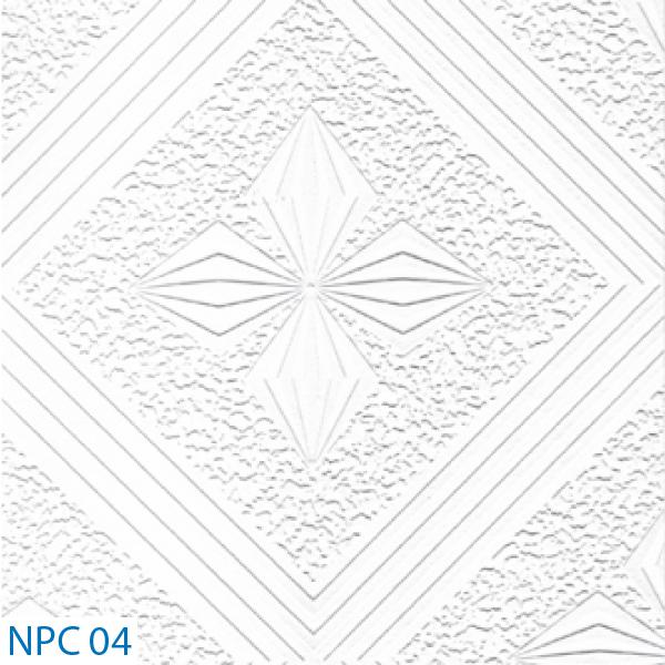 NPC 04