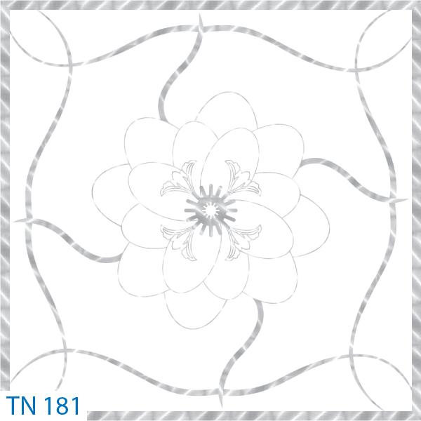 TN 181