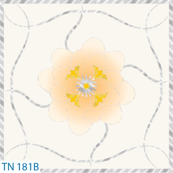 TN 181B